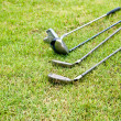Stock Photo: Golf club laying on the grass