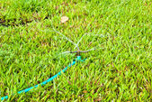 Sprinkler watering the green grass — Stok fotoğraf