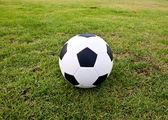 Yeşil çimenlerin üzerinde futbol ya da futbol topu — Stok fotoğraf