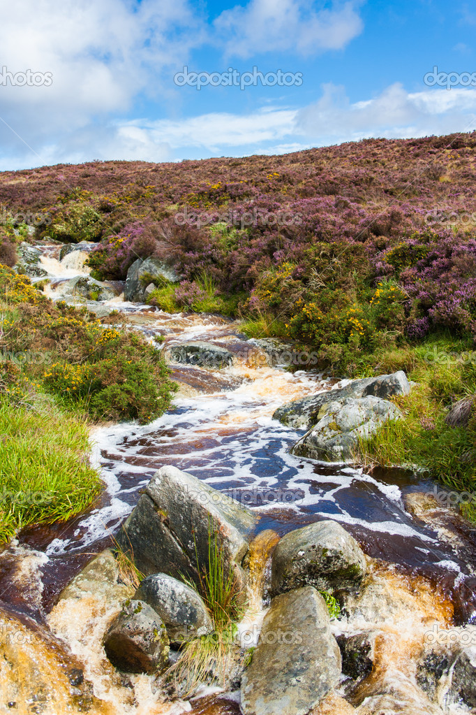 River in Wicklow Mountains — Stock Photo #10356753