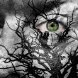 Stock Photo: Face with green eye painted with medusa like tree
