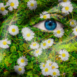 Face with blue eye and painted oxeye daisy - Stock Photo