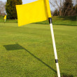 Yellow Golf Flag in Hole on Golf Course Green — Stock Photo