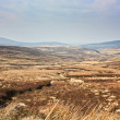 Heathlands on a hazy day in the mountains and a winding creek — Stock Photo