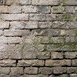 Old brick wall — Stock Photo #9710926