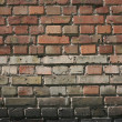 Ordinary brick wall — Stock Photo