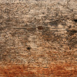 Old wood texture — Stock Photo #9710987