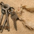 Old keys — Stock Photo #9711088