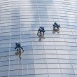 Stock Photo: Window washers