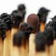 Match sticks — Stock Photo #9712933