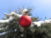 Christmas tree, red ball and snow — Stock Photo