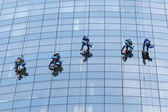 Five workers washing windows in the office building — Stock Photo