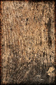 Weathered fond de texture de mur en bois — Photo