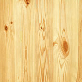 Pine tree wall texture — Stock Photo