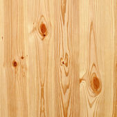 Natural pine tree wall texture — Stock Photo