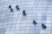 Five window cleaners — Stock Photo