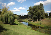 Landscape of green park and pond — Stock Photo