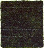 Nori sušený list izolovaných na bílém — Stock fotografie