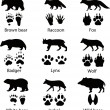 Animals and its tracks. Vector illustration — Imagens vectoriais em stock
