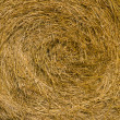 Stock Photo: Bail of Hay Background