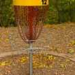 Disk Golf Catcher — Stock Photo