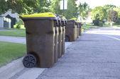 Garbage Day — Stock Photo