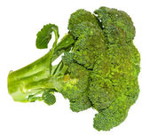 Fresh Brocolli — Stock Photo