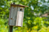 Wooden Bird House — Foto de Stock
