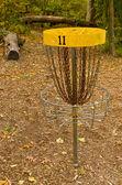 Disk Golf Catcher — Stock Photo