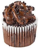 Chocolate Cupcake Isolation — Stock Photo