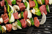 Shish Kabobs on the Grill — Stock Photo