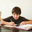 Smiling teenager studying homework #2 — Stock Photo