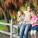 Матери и сыновья в волшебный сад — Стоковое фото