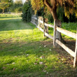 Stock Photo: Beautiful green garden and rural fence