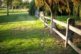 Beautiful green garden and a rural fence — Stock Photo
