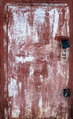 Metal door — Stock Photo
