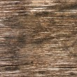 Stock Photo: Seamless texture of wood