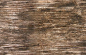 Seamless texture of wood — Stock Photo