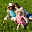 Family rest in the field, in nature — Stock Photo