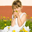 Girl sniffing dandelion, in nature — Stock Photo