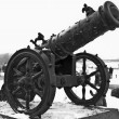 Canon history weapon — 图库照片 #9855049