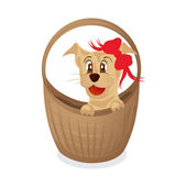 Simpotichny cachorro en una cesta — Vector de stock