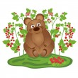 Stock Vector: Bear, bushes of raspberries