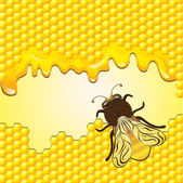 Vector bee and honeycombs — Stockvector