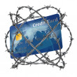 Credit card — Stock Photo #9516243