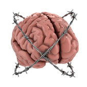 Human brain under barbwire — Stock Photo