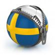 Stock Photo: Sweden football nation