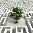Stock Photo: Single tree lost in endless labyrinth -ecology 3d concept