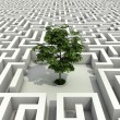 Single tree lost in endless labyrinth -ecology 3d concept — Stock Photo