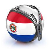 パラグアイ サッカー国家 — ストック写真